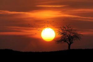 sunset time lapse photography tips 3