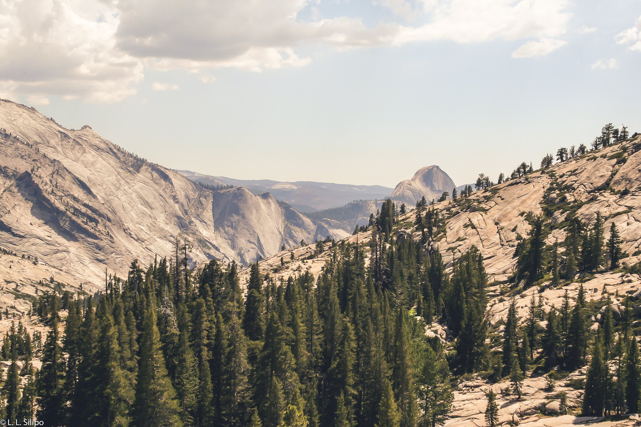 California, Yosemite, america, beautiful, capitan, conifer, el capitan, landmark, landscape, mountain, national, nature, outdoors, park, rock, scenic, travel, valley, wood, yosemite national park